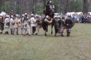 На историческом фестивале в Гнездово конь напал на человека