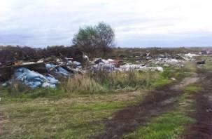 Экологическая ситуация в Смоленской области ухудшилась