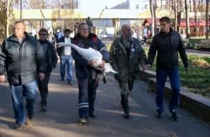 В Смоленском районе из замерзающего озера спасли лебедя. Фоторепортаж