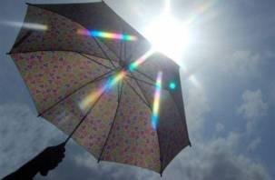 В Смоленске на выходных будет тепло и дождливо