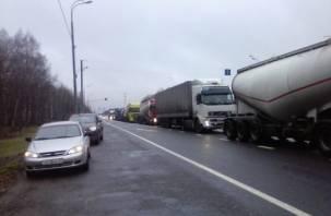 Дальнобойщики устроили акцию протеста на трассе М1 в Сафоновском районе