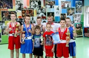 Юные смоленские боксеры стали финалистами турнира в Санкт-Петербурге
