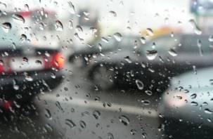 Первые осенние выходные в Смоленске будут дождливыми