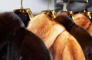 В Смоленске раскрыта кража меховых изделий на сумму более 1,6 млн рублей