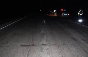 В Смоленской области под колесами автомобиля погиб мужчина
