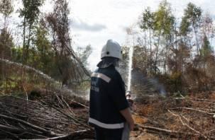 Тульские спасатели борются с пожарами на Смоленщине