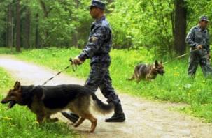 Смоленские полицейские спасли двух заблудившихся в лесу пенсионеров