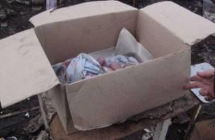 Смолянка родила младенца в подсобке магазина и оставила его в коробке
