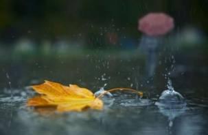 В выходные в Смоленске будет пасмурно и дождливо