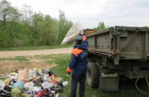 В Смоленской области стартует акция «Чистый берег»