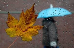 Сегодня в Смоленске возможен дождь