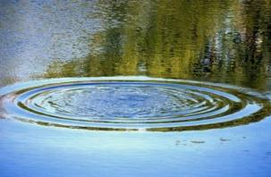 В реке Каспля утонула женщина