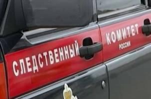 Следствие устанавливает причины гибели семьи в Руднянском районе