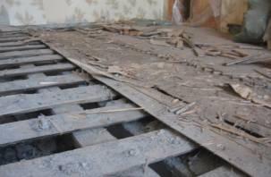 В Сафоновском районе нашли мумию