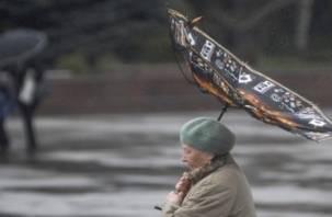 МЧС предупреждает смолян о надвигающемся штормовом ветре