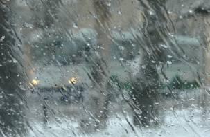 В Смоленске на выходных до +9°С