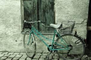 В Ельнинском районе задержали велосипедиста с винтовкой