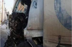 В Смоленской области «мерседес» столкнулся с фурой