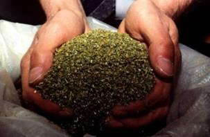 Житель Сафоновского района хранил на шкафу полкило марихуаны