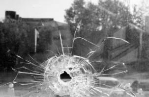 В Смоленске из пневматического оружия расстреляли троллейбус