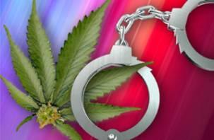 В Тульской области за хранение марихуаны арестован смолянин
