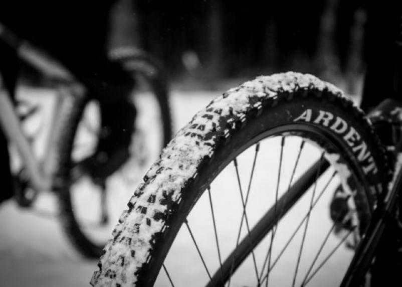 В Смоленском районе водитель насмерть сбил велосипедиста и скрылся