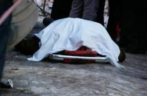 На улице Генерала Лукина в Смоленске обнаружено тело мужчины