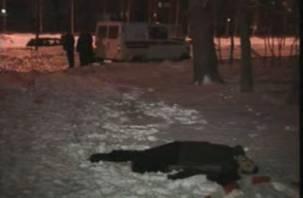 Смоленская полиция ищет очевидцев смертельного ДТП