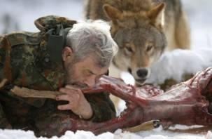 Есть ли мясо дохлых волков в смоленских полуфабрикатах?