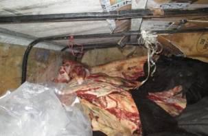 В Смоленской области задержали машину с сомнительным мясом