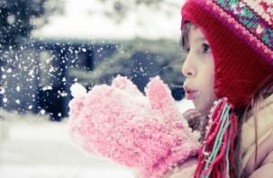 Выходные в Смоленске будут ясные и морозные