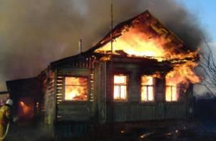 В Гагаринском районе в огне погиб человек