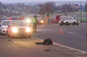 В Ярцевском районе на трассе М1 насмерть сбит велосипедист