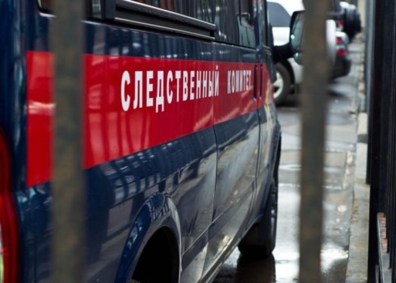 Следователи озвучили причины смерти двух младенцев в Ярцеве