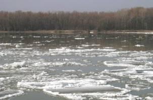 В Смоленской области не будет большого паводка