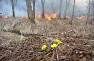 На Смоленщине прогнозируется тяжелый пожароопасный период