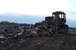 На руднянском полигоне уничтожили 40 тонн фруктов и овощей