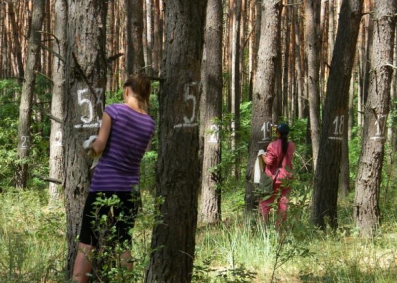 Национальный парк «Смоленское Поозерье» предлагает совместить приятное с полезным
