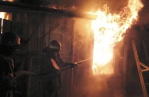 Расследуются обстоятельства гибели двух парней в пожаре в Велиже