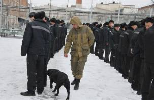 Смоленских заключенных обыскали