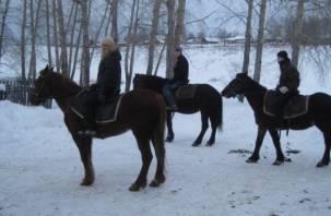 В Рославльском районе работает конная школа