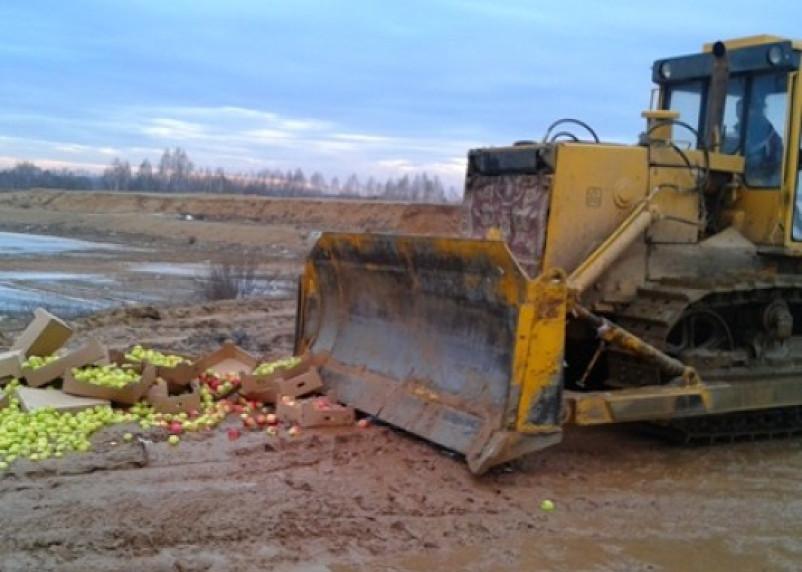 В Смоленской области уничтожили 8 тонн яблок и пекинскую капусту