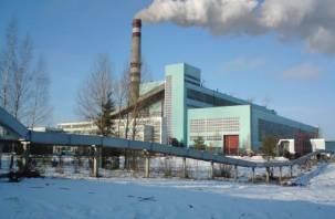 Немцы отремонтируют свою электростанцию в Духовщинском районе