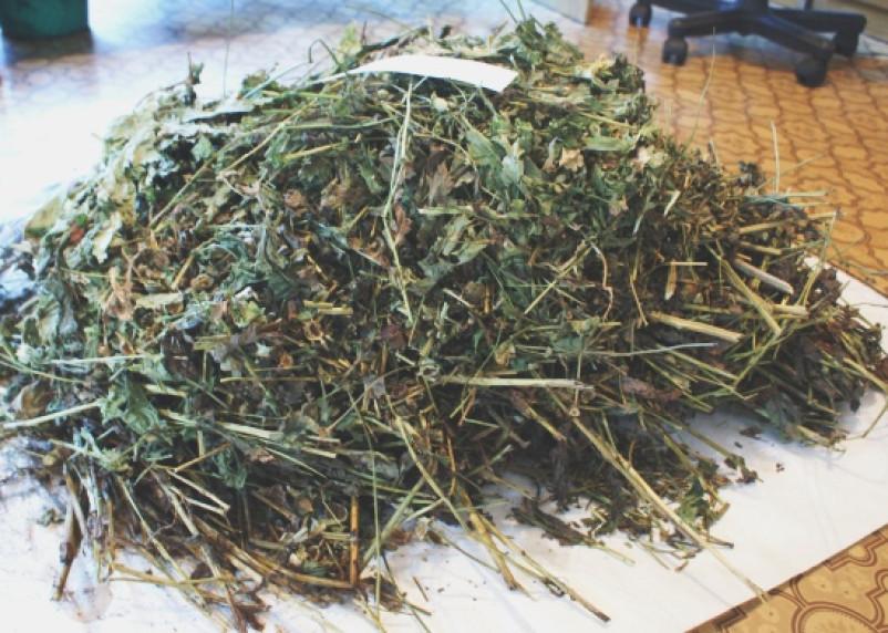 У жителя Новодугинского района изъяли более килограмма маковой соломы