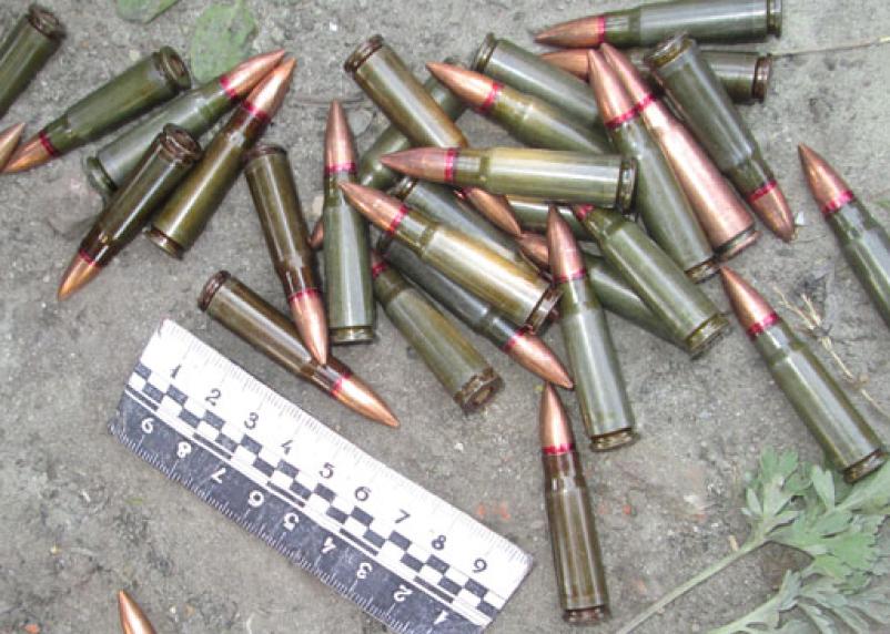 Смолянин хранил у себя в доме оружие и боеприпасы