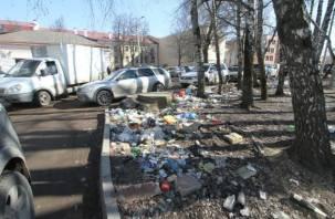 В центре Смоленска образовалась свалка мусора. Фоторепортаж