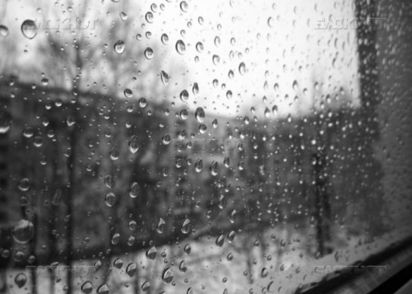 Сегодня в Смоленске будет тепло и дождливо