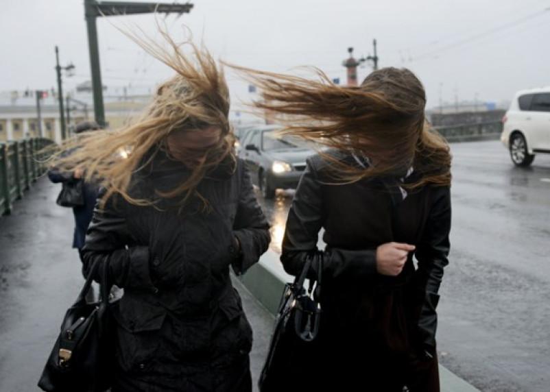 МЧС предупреждает о штормовом ветре в Смоленске