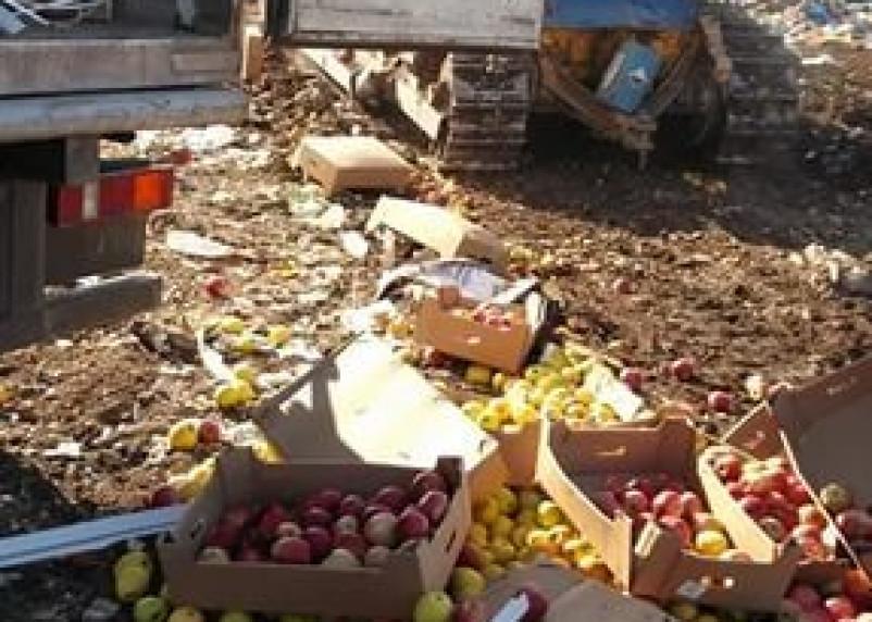 Под Смоленском снова закопали овощи и фрукты
