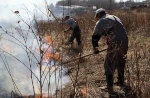 МЧС рассказало, сколько смолянам придется заплатить за пал сухой травы